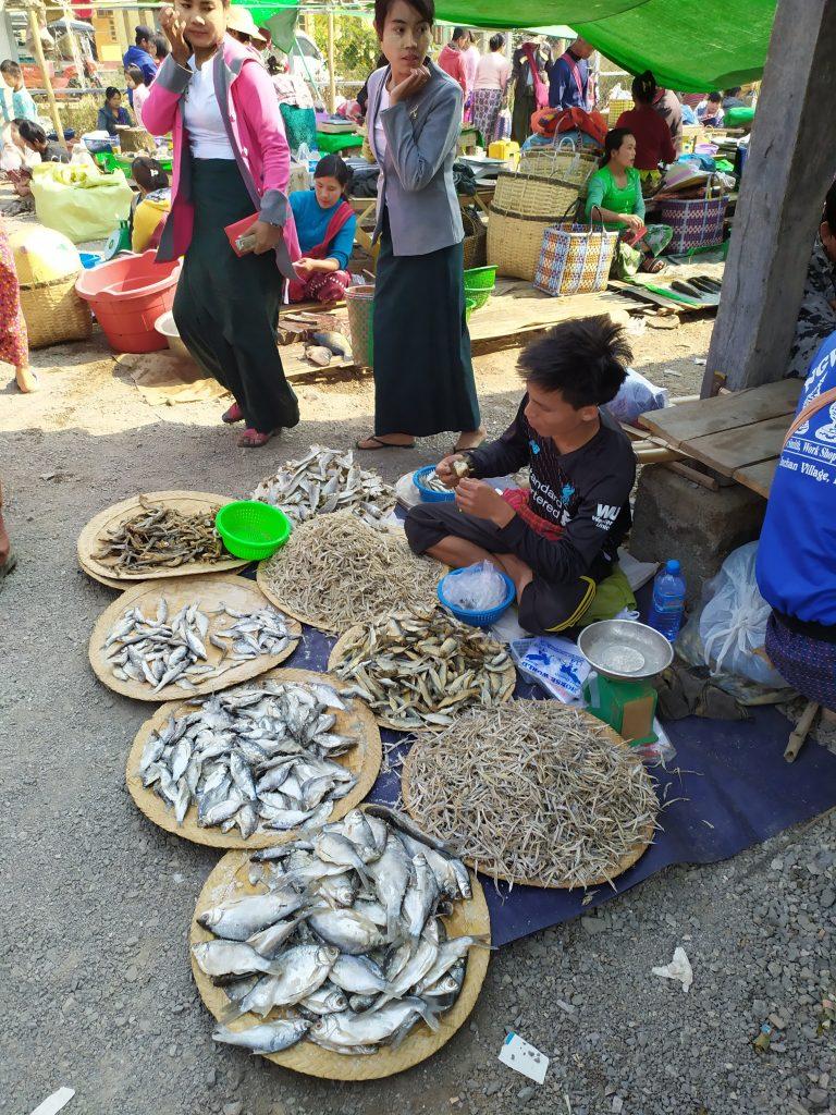 Lago Inle. Hombre vendiendo varios tipos de pescado en el mercado.